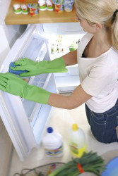 Fridge Cleaning Ruislip